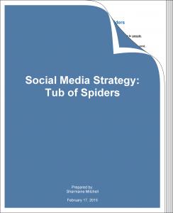 social_media_strategy_tos